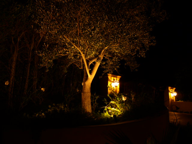 Newbury Park Exterior Lighting